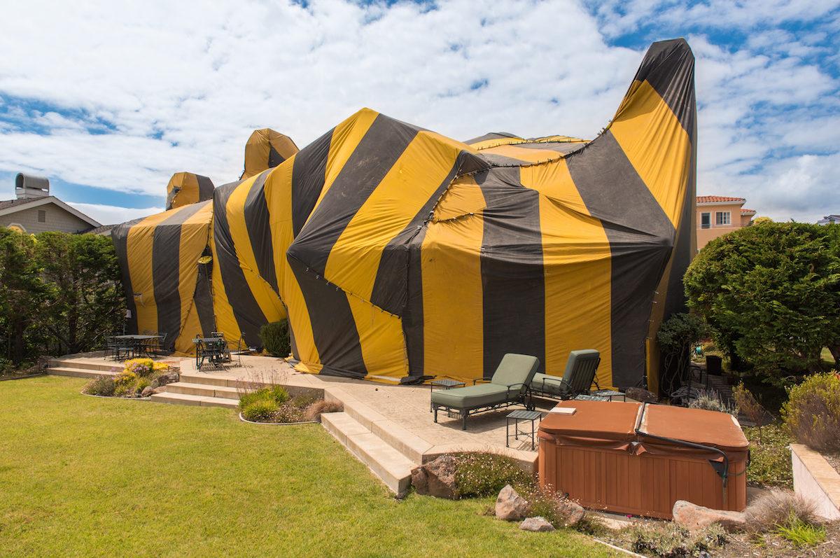 Advantage Tent Rental